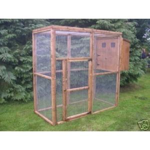 Cat Enclosures and Runs