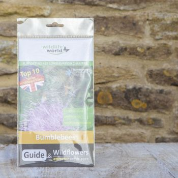 Mini Guide to Bumblebees with Wildflower Seeds