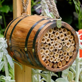 The Bee Barrel