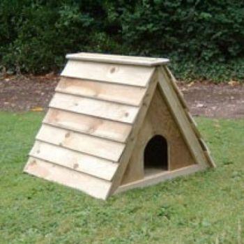 Budget Duck Ark