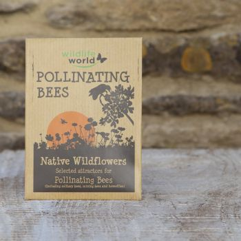 Native Wildflower Seeds for Pollinating Bees