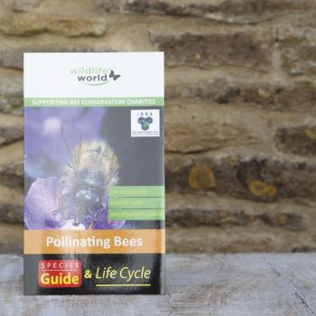 UK Pollinating Bees Guide