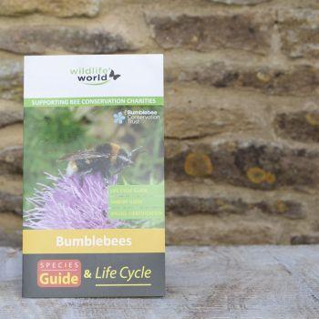 UK Bumblebees Guide