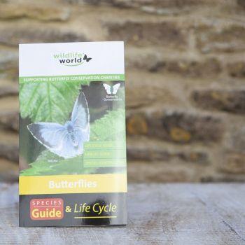 UK Butterflies Guide